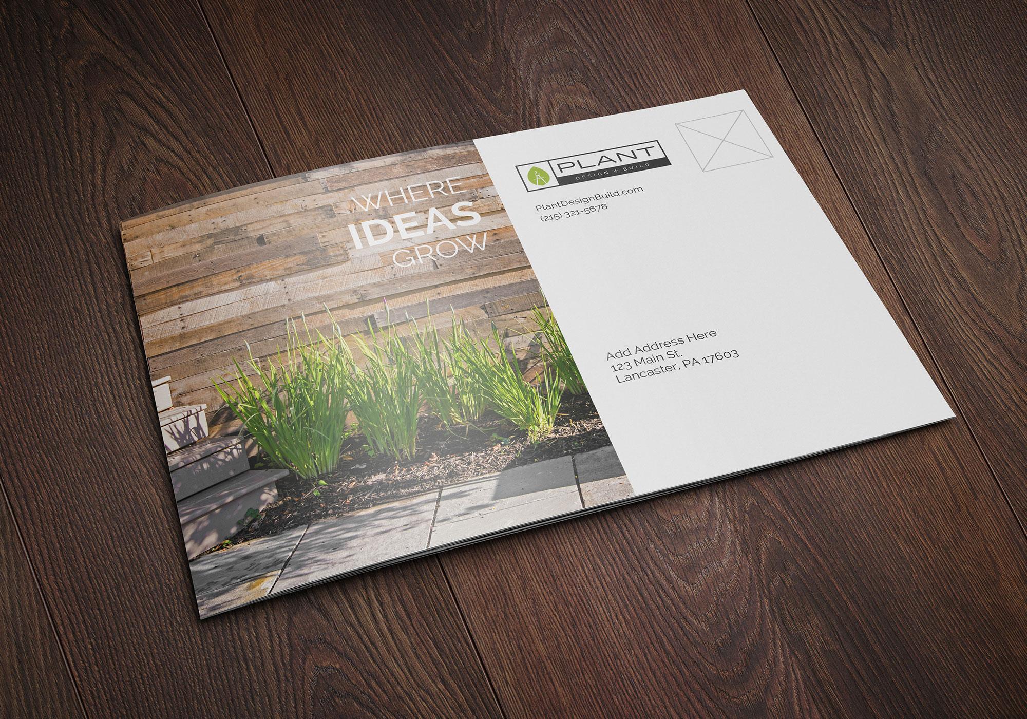 PLANT - Brochure 6